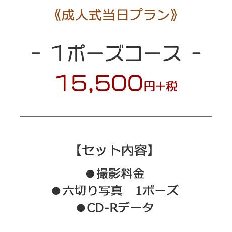 m-seijin01